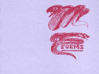 Poèmes sans tain (et autres sauvageries)